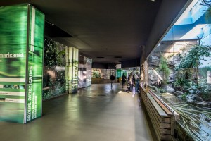 001_zoo_interiors_barcelona_location_bsm
